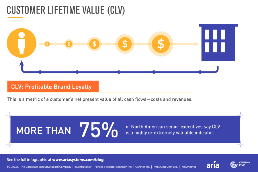 Customer Lifetime Value ROI