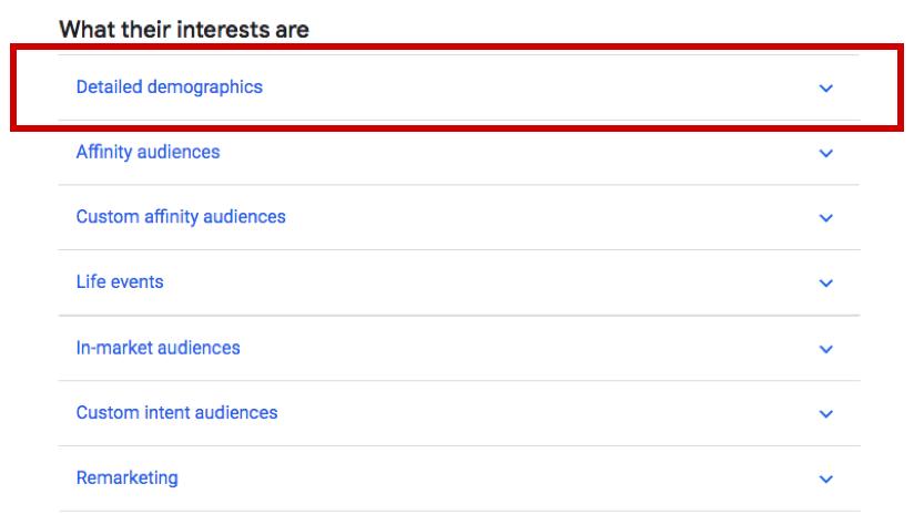 Detailed Demographics Audiences